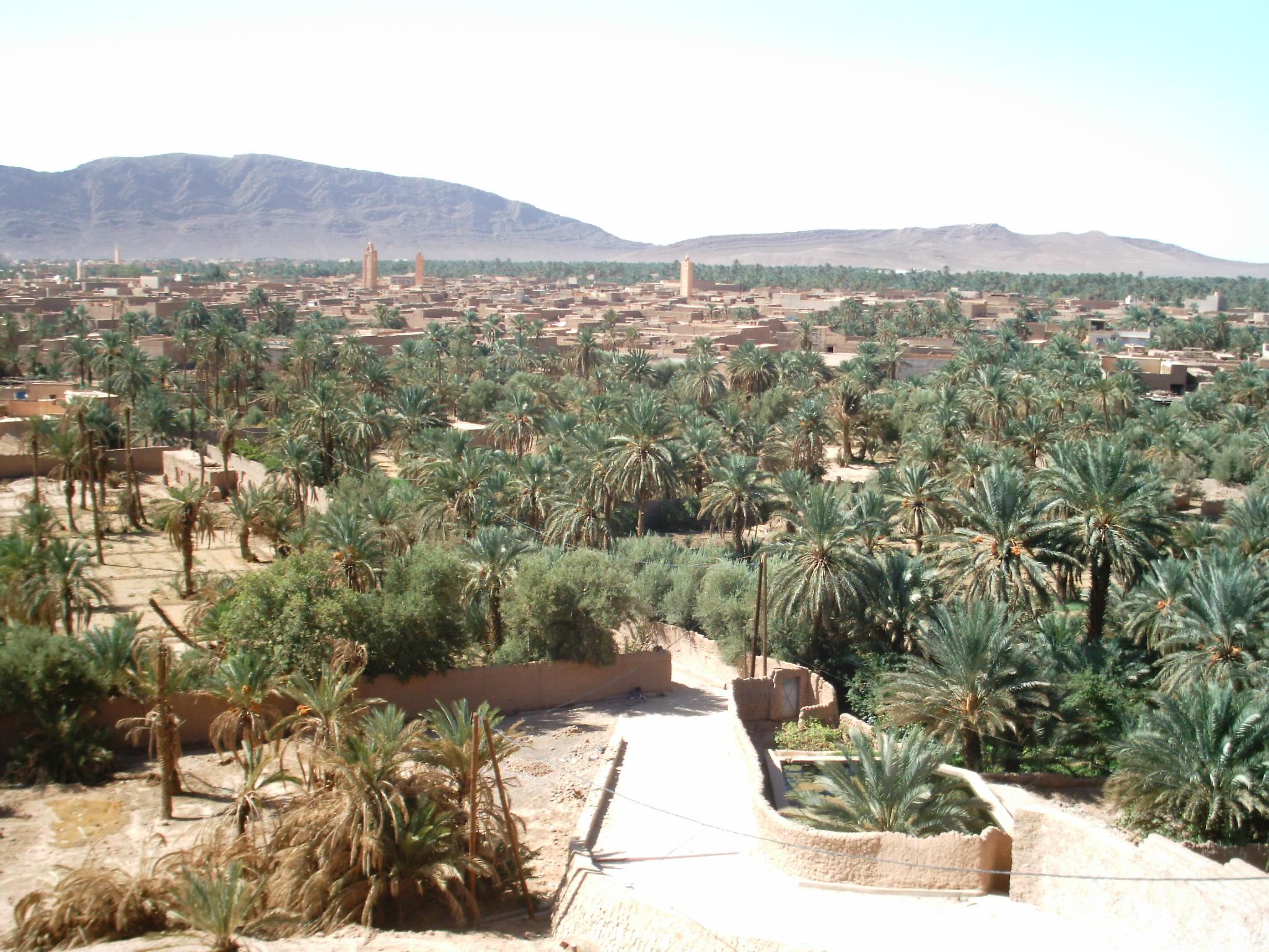 اقصى المغرب °ˆ~*¤®§(*§--فكيك مدينة القصور zoom_figuig_azro02.j